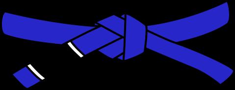 Синий пояс по БЖЖ
