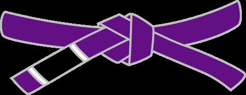 Пурпурный пояс по Джиу-Джитсу