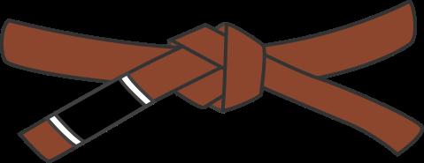Коричневый пояс по Джиу-Джитсу