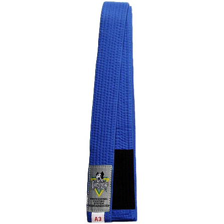 gameness_belt_blue