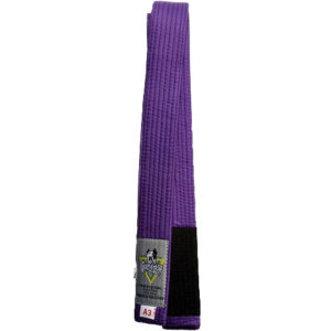gameness_belt_purple